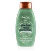 aveeno fresh greens 2 in 1 hair shampoo bottle