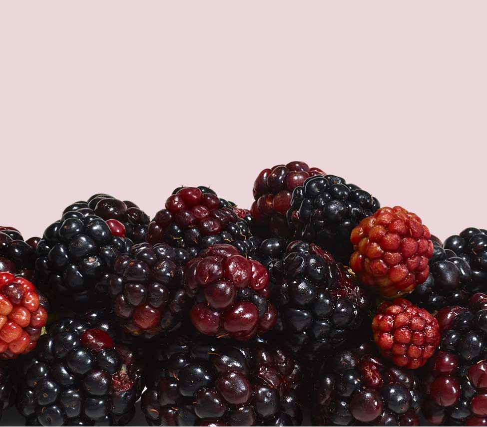 pile of berries against a pink background